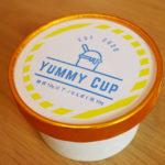 糖質制限しながらたんぱく質を10gも摂取できる夢のようなアイス! 24/7DELI&SWEETS「YUMMY CUP」を食べてみました