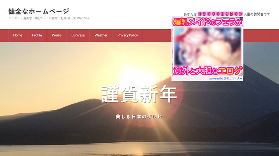 【激怒】忍者ツールズのカウンターを使ってたら急にエロ広告が出るようになった!! 健全なホームページなのに!!