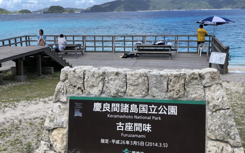 座間味島に1泊してきた旅行記 / シュノーケルして10分でウミガメを見れたりいろいろ食べたり